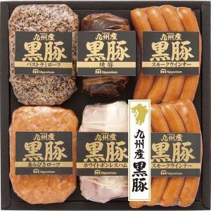 日本ハム 九州産黒豚ハムギフト NO-50  内祝い ギフト 出産 結婚 快気 法事|breezebox