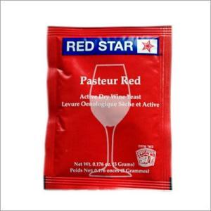 Pasteur Red 5g 【印字ミス・消費期限/正しくは2017年12月】