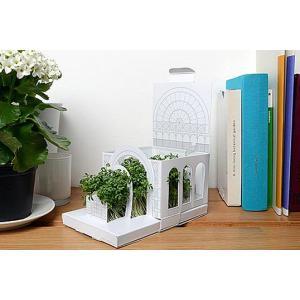 Postcarden ポストカーデンBotanical ボタニカル 植物園 箱庭づくりポストカードギフトプレゼントグリーティングカード立体ガーデンインテリア定形外郵便物|bricbloc