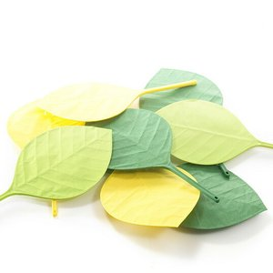 Ha Uchiwa Leaf Fan葉うちわ遠い昔の人々も最初は葉っぱを使って涼んでいたのかも。+d (プラスディー) アッシュコンセプト|bricbloc