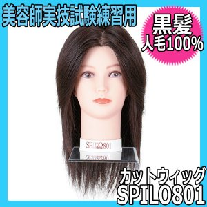 人毛100% 黒髪カットウィッグ スピロ801 美容師国家試験練習用|bright08