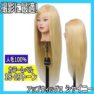 N.B.A.A. アップウィッグII シャイニー NB-WU2S キラキラ輝く髪 アップスタイルの練習、撮影用に|bright08