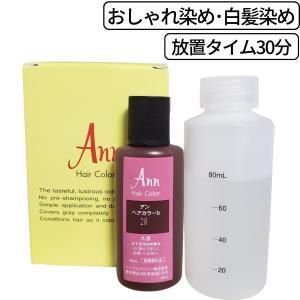 アン ヘアカラー 白箱 1組入 カラー剤 業務用 白髪染め/おしゃれ染め|bright08
