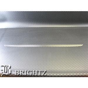 BRIGHTZ プレミオ 260系 超鏡面ステンレスメッキトランクリッドモール