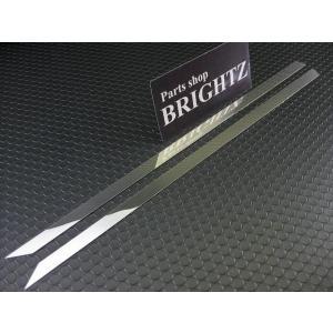 BRIGHTZ ヴォクシー VOXY 70系 超鏡面ステンレスメッキスライドレールパネル 2PC