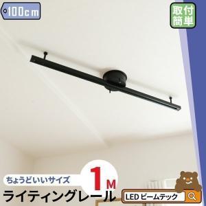 ダクトレール ライティングレール シーリングライト おしゃれ スポットライト 間接照明 DRS100-S