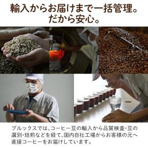 コーヒー 珈琲 ドリップバッグコーヒー ドリップコーヒー ドリップバッグ ドリップパック 10g お試しセット 10種類 52袋 ブルックス BROOK'S 送料無料|brooks|06