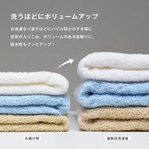 (M) ラージフェイスタオル ホテル仕様 泉州タオル 40×100cm ポイント消化 送料無料|broome|07
