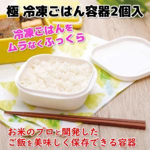 マーナ 極冷凍ごはん容器 2個入 K748|ブルソネティア PayPayモール店