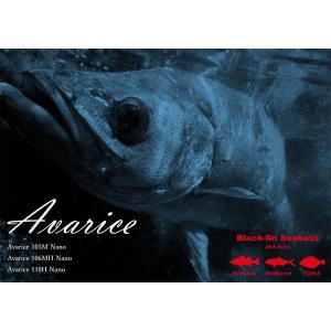 Avarice 103M Nano  アバリス リップルフィッシャー|bsl13