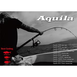 Ripplefisher 2019 New model Aquila ST 80-4  リップルフィッシャーアクイラ|bsl13