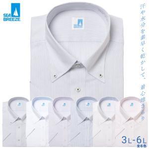 シーブリーズ ワイシャツ 半袖 大きいサイズ メンズ サカゼン 春夏 クールビズ 形態安定 冷感素材 ボタンダウン SEA BREEZE btclub