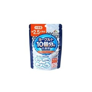 ヨーグルト10個分の乳酸菌 大容量 30.8g(200mg×154粒)|bts-shop