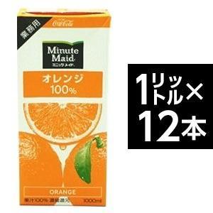 コカ・コーラ (コカコーラ) ミニッツメイド オレンジ 100% 1L紙パック×12(6×2)本入|bucklebunny