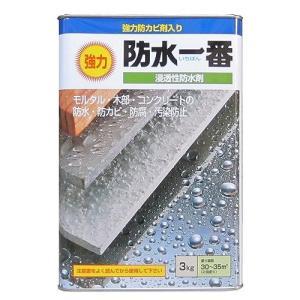 日本特殊塗料 - 強力防水一番 - 3kg - クリヤー