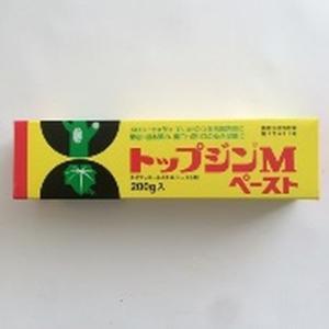 ニッソーグリー - トップジンMペースト - ...の関連商品8