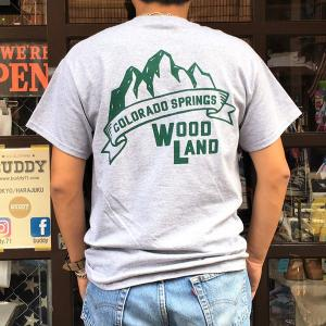 アウトドア コロラド スプリングス BUDDYオリジナル WOODLAND COLORADO SPRINGS Tシャツ ヘザーグレー GILDAN CAMP USA アメリカ国立公園|buddy-us-clothing