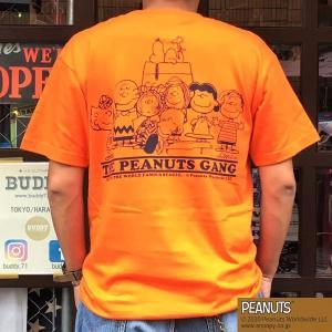別注 スヌーピーTシャツ PEANUTS THE PEANUTS GANG BUDDY 別注 SNOOPY ピーナッツ ギャング オールスターズ ライトグリーン 70's SCHULZ LIGHT GREEN|buddy-us-clothing