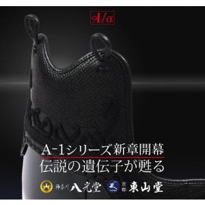 剣道防具 胴 A-1α 胴 剣道具・剣道防具・胴・単品|budogutozando