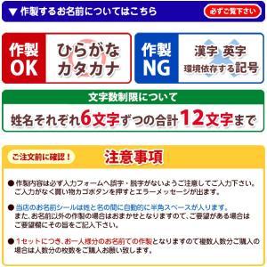 お名前シール3点セット/ネーム+アイロン+算数セット/イラスト//|bugyo|06