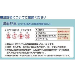ネームペン スタンペンG 印鑑付きボールペン/記念品/タニエバー bugyo 04
