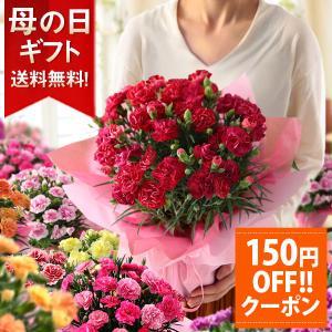 母の日ギフト アジサイ 鉢花 ボリューム満点 プ...の商品画像