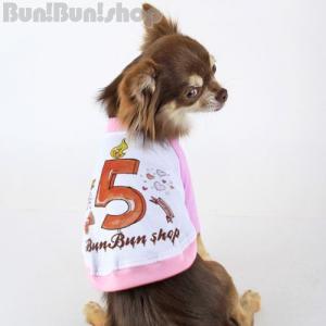 新ナンバー5 犬服ラグランT|bunbunshop