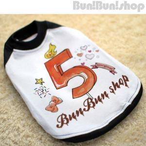新ナンバー5 犬服ラグランT|bunbunshop|02