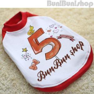 新ナンバー5 犬服ラグランT|bunbunshop|03