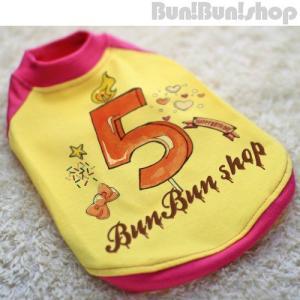 新ナンバー5 犬服ラグランT|bunbunshop|04