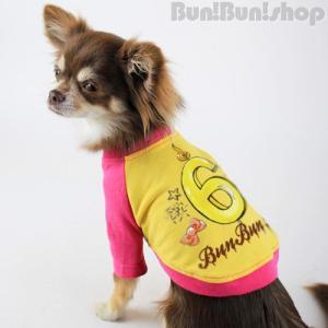 新ナンバー6 犬服ラグランT|bunbunshop