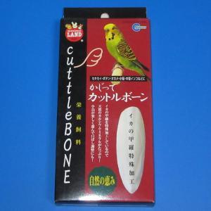 【マルカン】かじってカットルボーン(2個入)|bunchoya