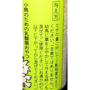【日本生菌】大好きん小鳥用 12g|bunchoya|03