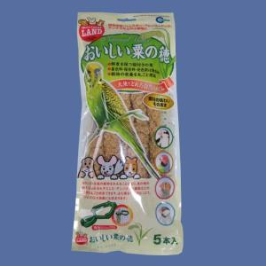 【マルカン】おいしい粟の穂 5本|bunchoya
