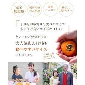 無添加 干し柿 紀州自然菓 あんぽ柿約55g ...の詳細画像2