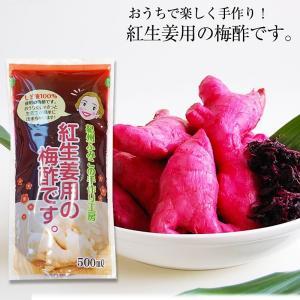 ●商品名 紀州ふみこの紅生姜用の梅酢です。   ●原材料名 梅酢、食塩、赤しそ   ●内容量 500...