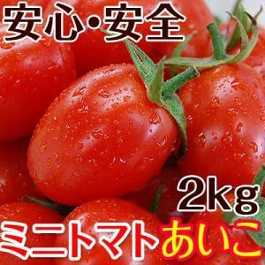 2019年ご予約開始!ミニトマトあいこ(アイコ)2kg (和歌山県産)減農薬、減化学肥料で育てたこだ...
