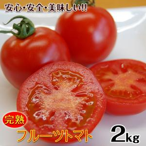 こだわりフルーツトマト2kg(送料無料)匠の里紀州が育てる減農薬、減化学肥料栽培 安心安全なコクのある驚きの甘いトマトを産地直送 (fy7)|bundara