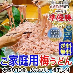 在宅応援!ご家庭用大盛 冷し梅うどん10食セット(麺、めんつゆ、梅干付)(fy6)|bundara