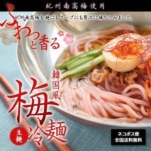 紀州南高梅使用 韓国風 梅冷麺 4食スープ付 ネコポス便【全国送料無料】 (fy3)|bundara
