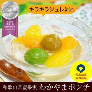 わかやまポンチ!和歌山県産梅の甘露煮、温州みかん、はっさく、若桃をジュレに閉じ込めた和歌山県協力商品のフルーツスイーツ。