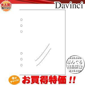 【A5サイズ】Davinci リフィル「A5サイズ・アクセサリー」P.Pポケット DAR320【ダ・ヴィンチ】レイメイ藤井|bungle