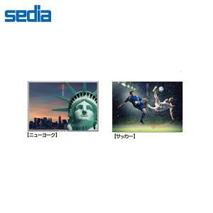 【全8柄】セキセイ/カバーアルバム〈高透明〉40枚収容 きせかえ君 (KP-234) sedia 表紙を着せ替えできるポケット付表紙のフォトアルバム bungle