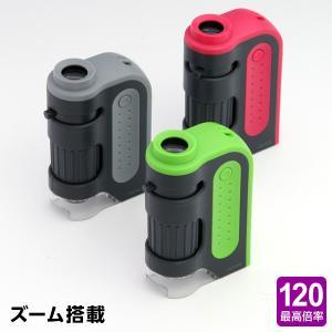 ハンディ顕微鏡ZOOM RXT203 子供用 自由研究に! bungu-style