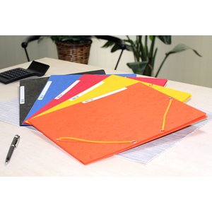 エクザコンタ -EXACOMPTAA4ゴム留めファイル スタンダードカラー5色セット|bunguya