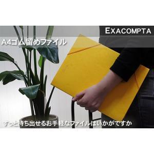 エクザコンタ -EXACOMPTAA4ゴム留めファイル 単色5冊セット|bunguya|02
