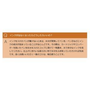 名入れ 無料  限定 ラミー LAMY アルスター 万年筆 ブロンズ|bunguya|09