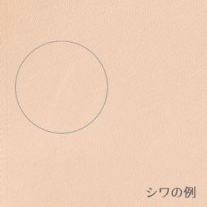 本革 ゴートヌメ A5サイズ 名入れ 無料 ミドリ midori MDノートバッグ 縦型|bunguya|09