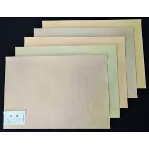書道 紙 練習用料紙「嵯峨」中字用 絹目 50枚(5柄x各10枚) bunrindo-1