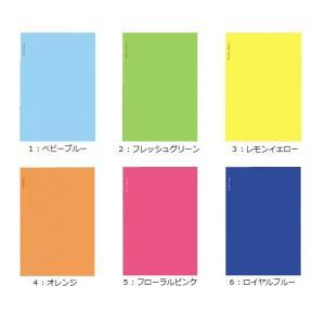 コクヨ ア-SL60 スリムアルバム 2段薄型 A5変形 L判 40枚|bunsute